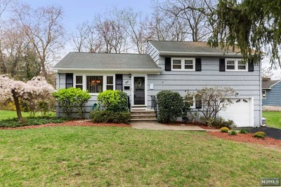 Ramsey Single Family Home For Sale: 44 Roandis Court