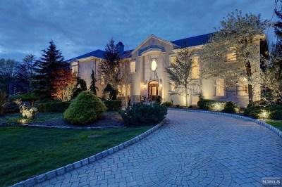 Upper Saddle River Single Family Home For Sale: 28 Arrowhead Drive