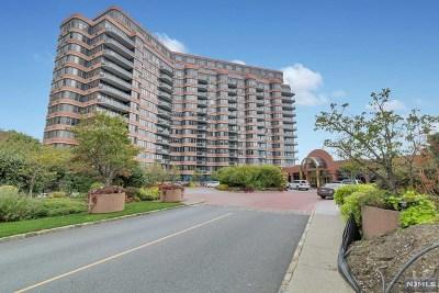 Cliffside Park Condo/Townhouse For Sale: 100 Winston Drive #1js