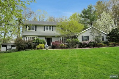 Franklin Lakes Single Family Home For Sale: 235 Valley View Drive