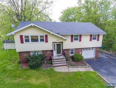 West Milford Single Family Home For Sale: 687 Morsetown Road