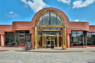 Cliffside Park NJ Condo/Townhouse For Sale: $519,000