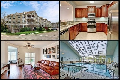 Rockaway Township Condo/Townhouse For Sale: 7308 Polk Drive
