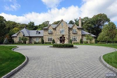 Saddle River Single Family Home For Sale: 47 Chestnut Ridge Road