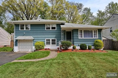 Fair Lawn Single Family Home For Sale: 0-41 Saddle River Road