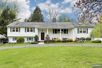 Upper Saddle River Single Family Home For Sale: 547 East Saddle River Road