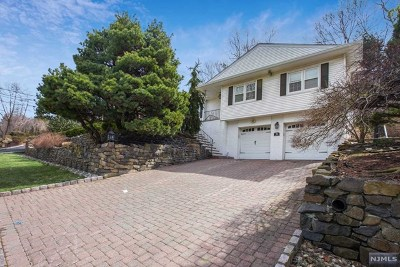 Tenafly Single Family Home For Sale: 74 Homestead Road