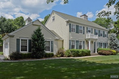 Morris County Single Family Home For Sale: 115 West End Avenue