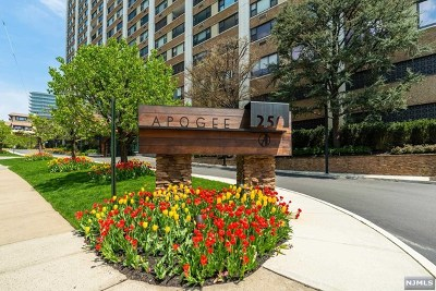 Cliffside Park Condo/Townhouse For Sale: 250 Gorge Road #17e