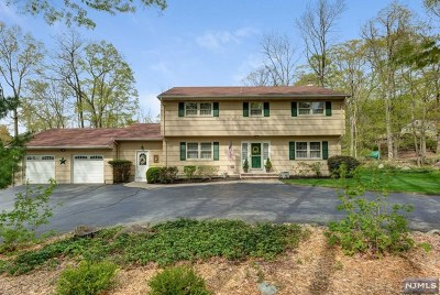 Morris County Single Family Home For Sale: 19 Crest Hill Drive