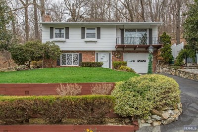 Ringwood Single Family Home For Sale: 338 Lakeview Avenue