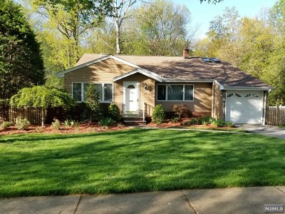 River Edge Single Family Home For Sale: 159 Valley Road