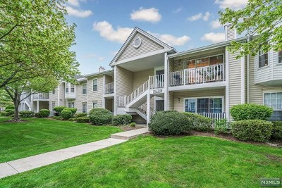 Mahwah Condo/Townhouse For Sale: 1012 Ash Drive
