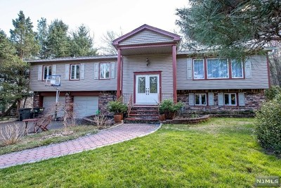 Hillsdale Single Family Home For Sale: 31 Langerfeld Road