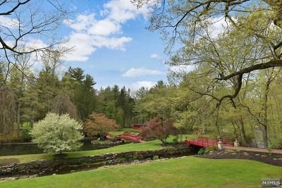 Saddle River Single Family Home For Sale: 37 East Saddle River Road