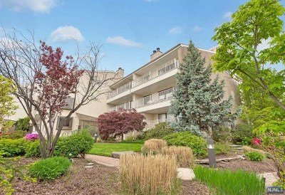 Edgewater Condo/Townhouse For Sale: 1225 River Road #9d