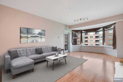 Hudson County Condo/Townhouse For Sale: 20 Ave At Port Imperial #309