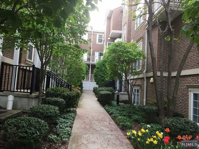 Hudson County Condo/Townhouse For Sale: 201 Dey Street #169