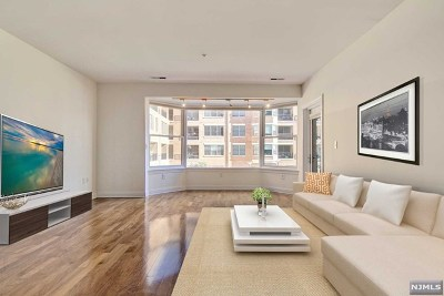 Hudson County Condo/Townhouse For Sale: 22 Ave At Port Imperial #226