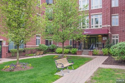 Englewood Condo/Townhouse For Sale: 1131 Riverview Avenue