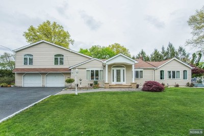 Morris County Single Family Home For Sale: 10 Libby Avenue