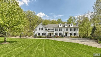 Franklin Lakes Single Family Home For Sale: 177 Breakneck Road