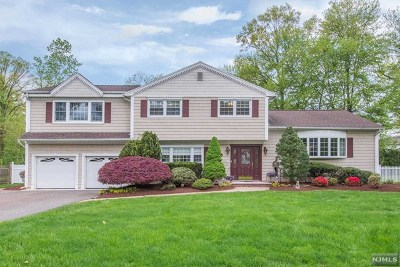 Wayne Single Family Home For Sale: 60 Lenox Road