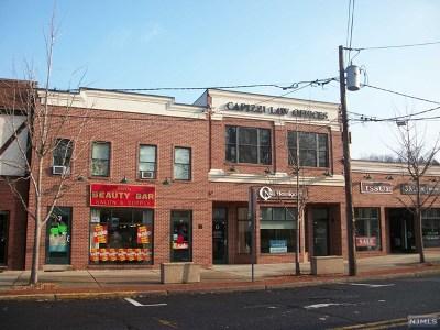 Tenafly Commercial For Sale: 11 Hillside Avenue