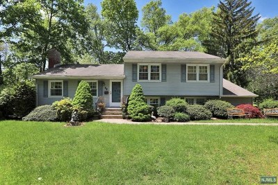 Wayne Single Family Home For Sale: 66 Valley View Terrace