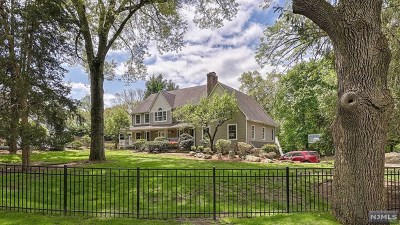 Wayne Single Family Home For Sale: 22 Basswood Terrace