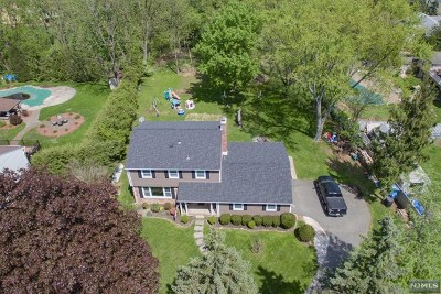 Wayne Single Family Home For Sale: 10 Stalter Drive