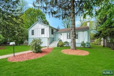 Cresskill Single Family Home For Sale: 185 4th Street