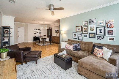 Hudson County Condo/Townhouse For Sale: 510 Monroe Street #301