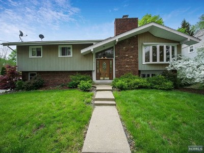 Morris County Single Family Home For Sale: 5 Rickland Road