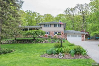 Morris County Single Family Home For Sale: 65 Ricker Road