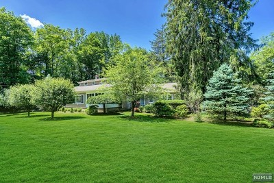 Saddle River Single Family Home For Sale: 249 East Saddle River Road