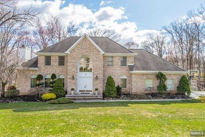 Morris County Single Family Home For Sale: 22 Woodshire Terrace