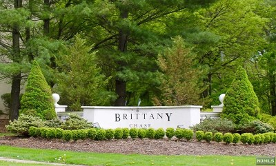 Wayne Condo/Townhouse For Sale: 517 Brittany Drive #517