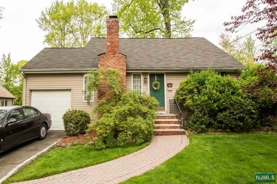 Cresskill Single Family Home For Sale: 213 Phelps Avenue