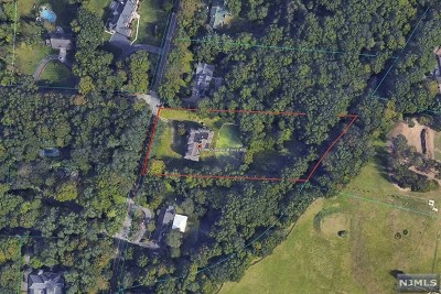 Saddle River Single Family Home For Sale: 80 West Saddle River Road