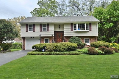 West Milford Single Family Home For Sale: 54 Ramapo Road