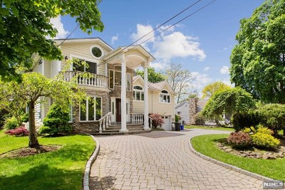 Cresskill Single Family Home For Sale: 224 East Madison Avenue