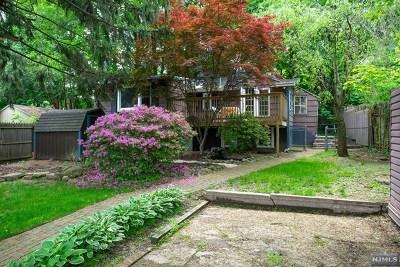 Morris County Single Family Home For Sale: 5 Mohawk Avenue