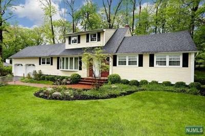Park Ridge Single Family Home For Sale: 4 Bona Court