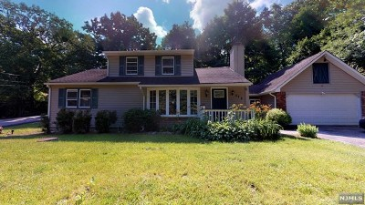 West Milford Single Family Home For Sale: 572 Ridge Road