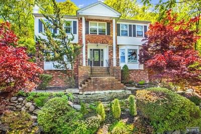 Morris County Single Family Home For Sale: 43 Franklin Lane