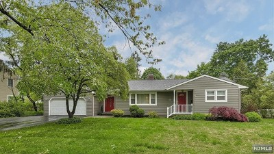 Morris County Single Family Home For Sale: 218 Boulevard