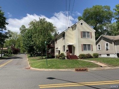 Tenafly Single Family Home For Sale: 239 Jefferson Avenue