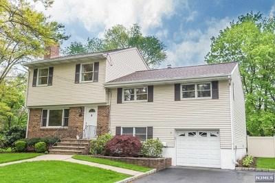 Ho-Ho-Kus Single Family Home For Sale: 24 Chestnut Place