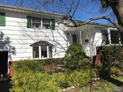 Cresskill Single Family Home For Sale: 141 Palisade Avenue